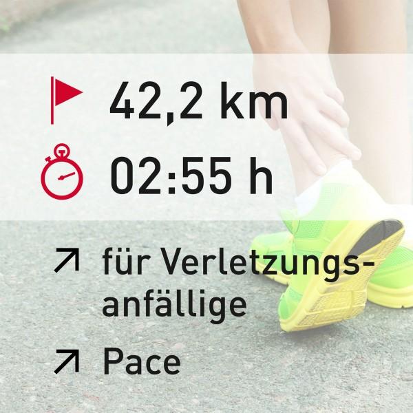 42,2 km - 02:55 h - Pace