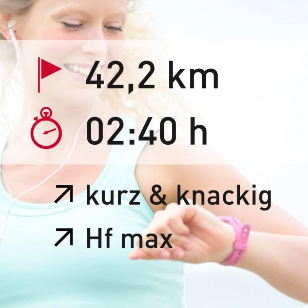 42,2 km - 02:40 h - intensity - Herzfrequenz