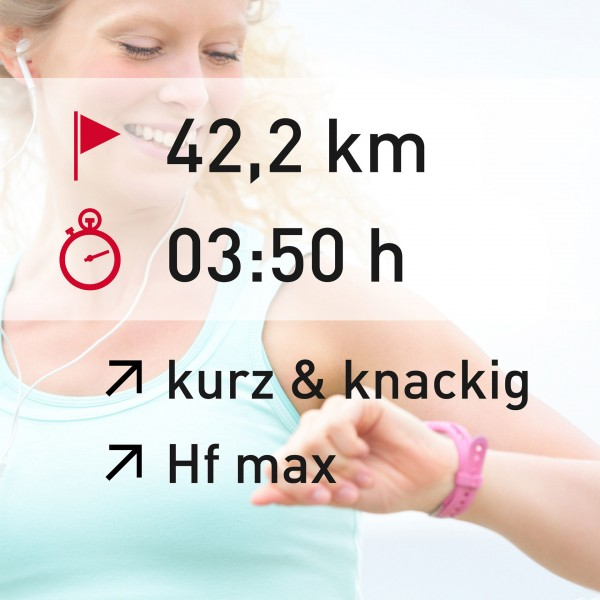 42,2 km - 03:50 h - intensity - Herzfrequenz