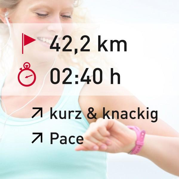 42,2 km - 02:40 h - intensity - Pace
